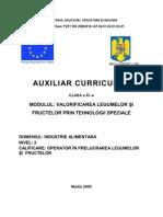 Auxiliar XI Leg-Fructe Tehn Spec