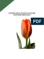 129565689 52409259 Intoxicatia Cu Plante Ce Contin Glicozizi Digitalici