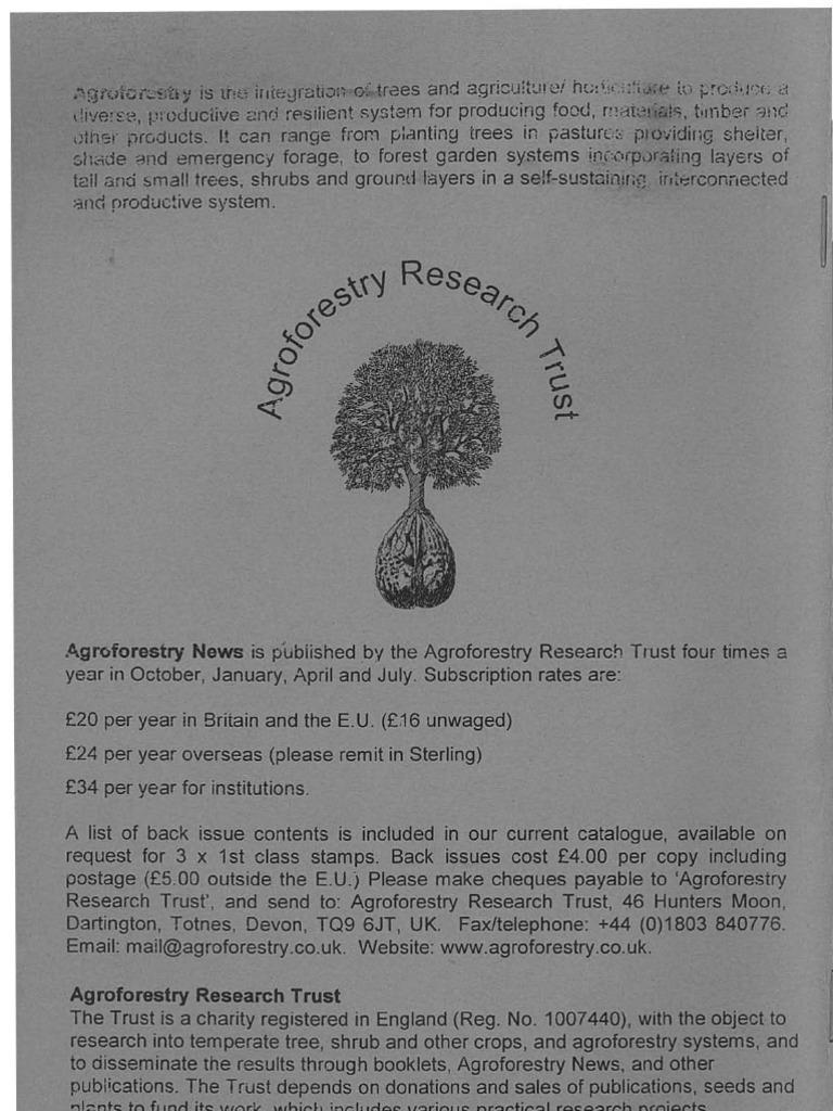 Butia odoratus COLD HARDY JELLY PALM Seeds!