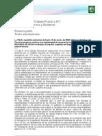 TP n° 1 Chiavassa-Concursos y Quibras