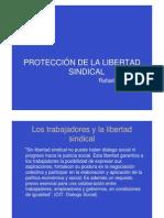 Proteccion Libertad Sindical