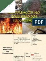1_perturbacoes_ecossistemas