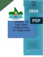 Granja de Gallinas Ponedoras en Ranchon 2010