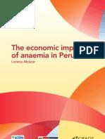 Economic Impact Anaemia ACF Peru 2013 En