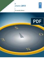 Informe de Desarrollo Humano 2013_Resumen