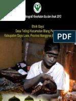 Buku Seri Etnografi Kesehatan Ibu dan Anak 2012; Etnik Gayo, Desa Tetingi, Kecamatan Blang Pegayon, Kabupaten Gayo Lues, Provinsi Nanggroe Aceh Darussalam