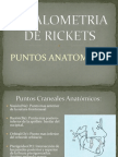 Cefalometria de Rickets (1)