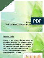 Presentacion Del Acne