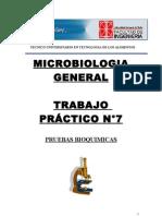 LABORATORIO N° 7 DE MICROBIOLOGIA GENERAL