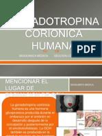 Gonadotropina Corionica Humana