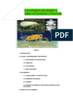 purin concepto elaboracion yortig.pdf