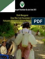 Buku Seri Etnografi Kesehatan Ibu dan Anak 2012; Etnik Manggarai, Desa Wae Codi, Kecamatan Cibal, Kabupaten Manggarai, Provinsi Nusa Tenggara Timur