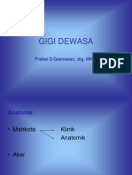 Gigi Dewasa