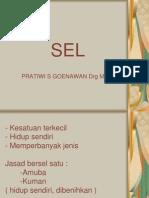 2. Sel