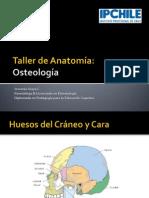 Taller de Anatomía