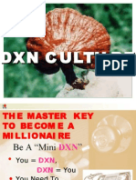 Dxn Culture