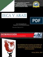 Luisa IECA Y ARA II
