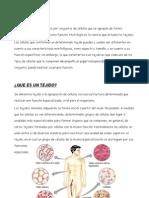 TEJIDOS HUMANOS, ÓRGANOS, APARATOS Y SISTEMAS.pdf