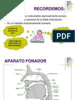El Aparato Fonador3242