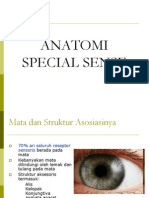 Special Sense