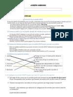 3_prc3a1ctica-dhcp[1]