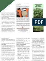 Brochure on Bamboo_Rvsd
