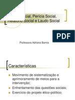 estudo-social-perc3adcia-social-relatc3b3rio-social-revisc3a3o-15-01.ppt