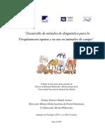 Desarrollo de métodos de diagnóstico para la Piroplasmosis equina - Asenzo