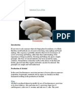 Industrial Uses of Fungi (2)