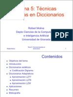 05 DICCIONARIOSx2.pdf