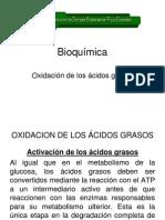 02 Oxidación de los ácidos grasos