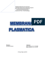 Trabajo de La Membrana Plasmatica