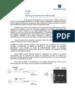 Guia 4 Lab Screening BT 140413.pdf