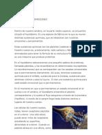 BIODESCODIFICACION.docx