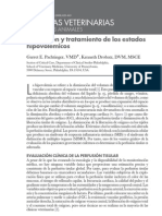 Evaluacion y Tratamiento de Los Estados Hipovolemicos