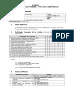 Ejemplo - Descripcion y Perfil de Competencias