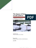 Dams Report