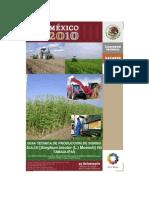 07.Folleto Sorgo Dulce Tamaulipas Feb 11