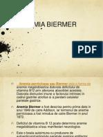 Anemia Biermer