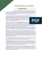 Jerarquía Digital Síncrona (SDH)