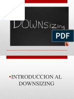 downsizing-110425124029-phpapp01