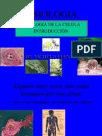 1 Ppt Fisiologia Celular Introd