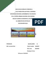 YACIMIENTO de GAS(Trabajo de Tratamiento)