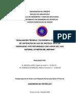 Monografia Gas de Sintesis1