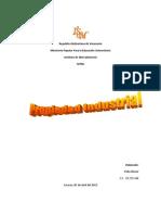 Ensayo Ley Propiedad Industrial