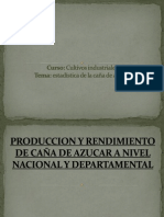 PRODUCCION DE CAÑA DE AZUCAR A NIVEL NACIONAL 22.pptx