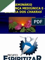 MÓDULO 5 - O CHAKRA DO PODER