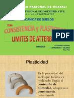 Limites de Consistencia Expo Unu 2013-1
