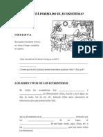 cadenaalimenticias-repaso-120702161711-phpapp01