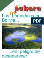 PUK-67.pdf